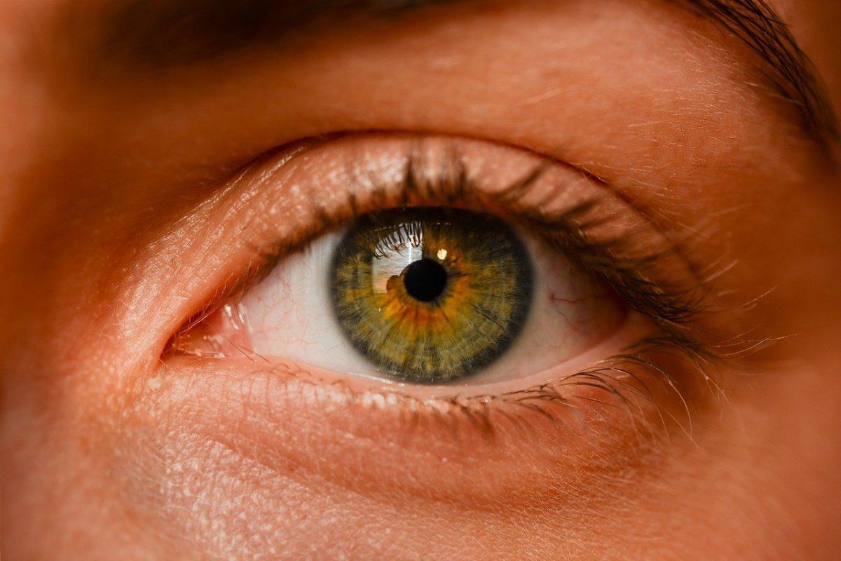 Oczy to zadziwiający organ. To właśnie dzięki nim rozróżniamy.